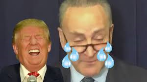 Senator Schumer Crying