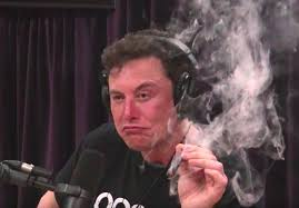 Elon Musk Smoking Pot