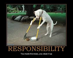 responsiblity