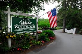 woodluch Pines