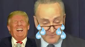 Senator Schumer Crying